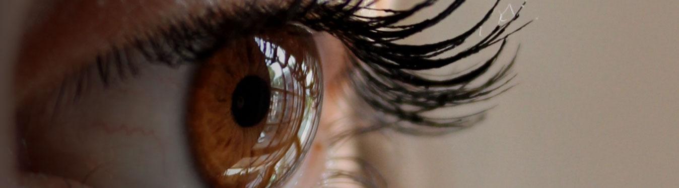 Optika Optometrist